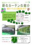 緑のカーテンの紹介