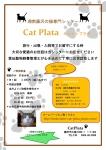 湘南藤沢猫専門シッター Cat Plata